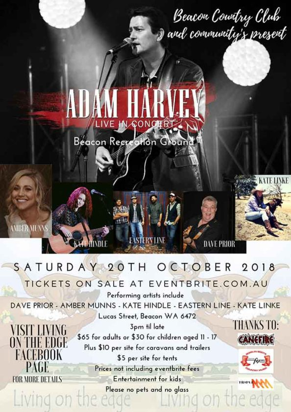 Promotional poster for the Adam Harvey Concert in Beacon 2018
