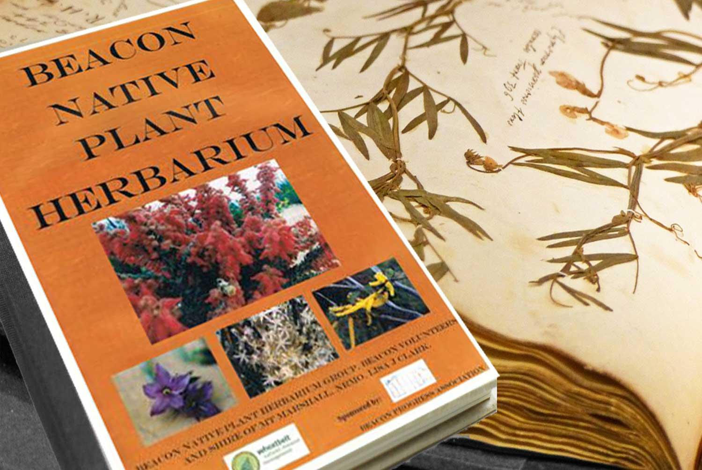 a picture of Beacon Native Plant Herbarium book