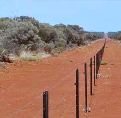 photo of a section of the emu fence at the edge of the central wheatbelt in Western Australia