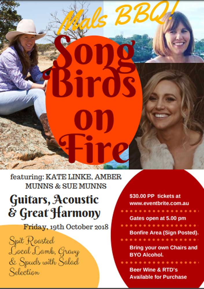 Song-Birds-on-Fire