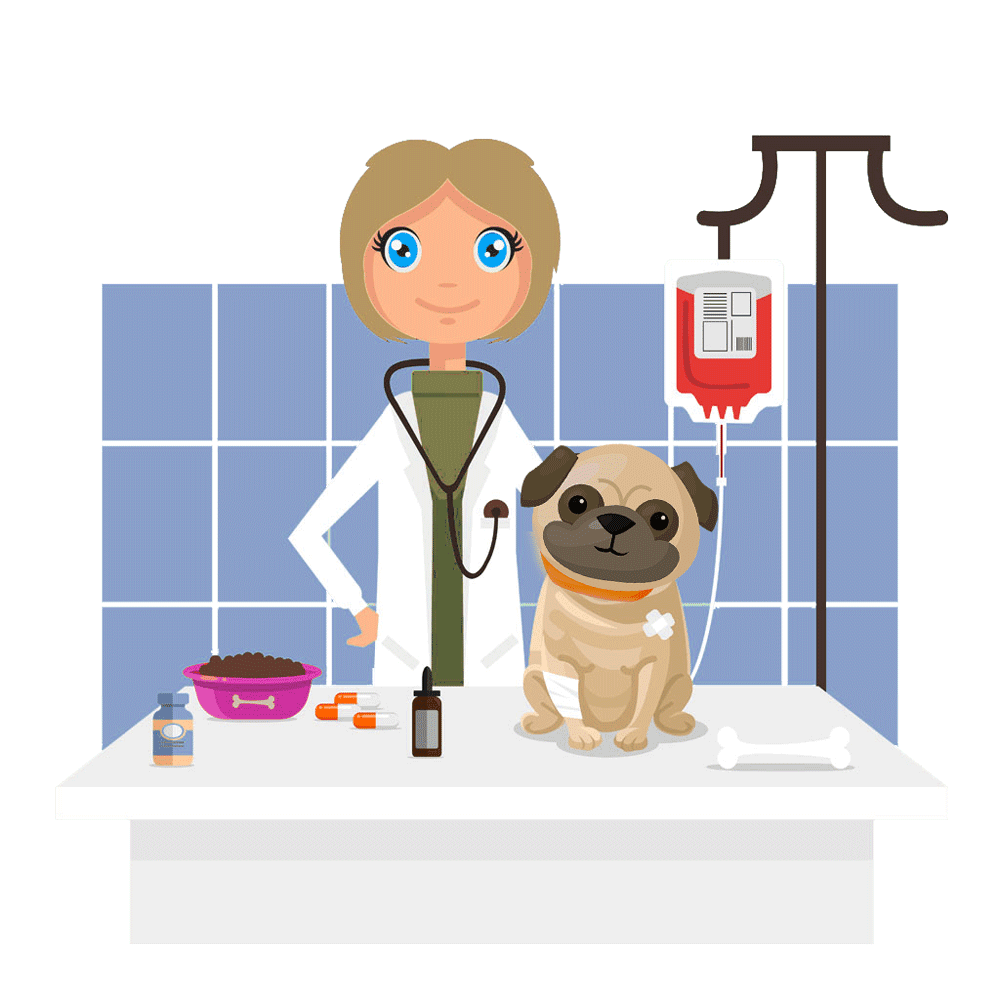 illustration of vet treating dog