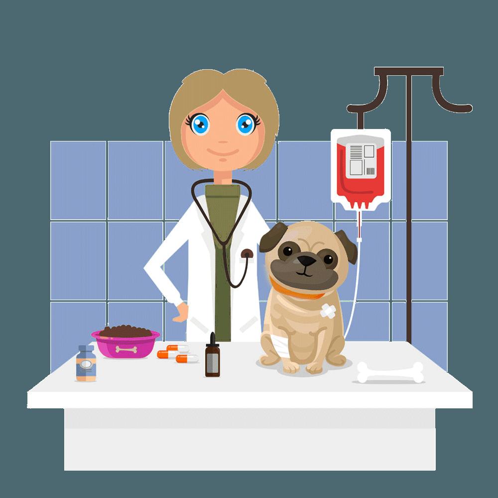 illustration of vet treating dog