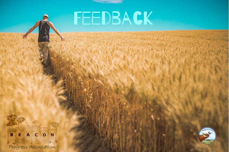 farmer walks through wheatfield - news feedback post