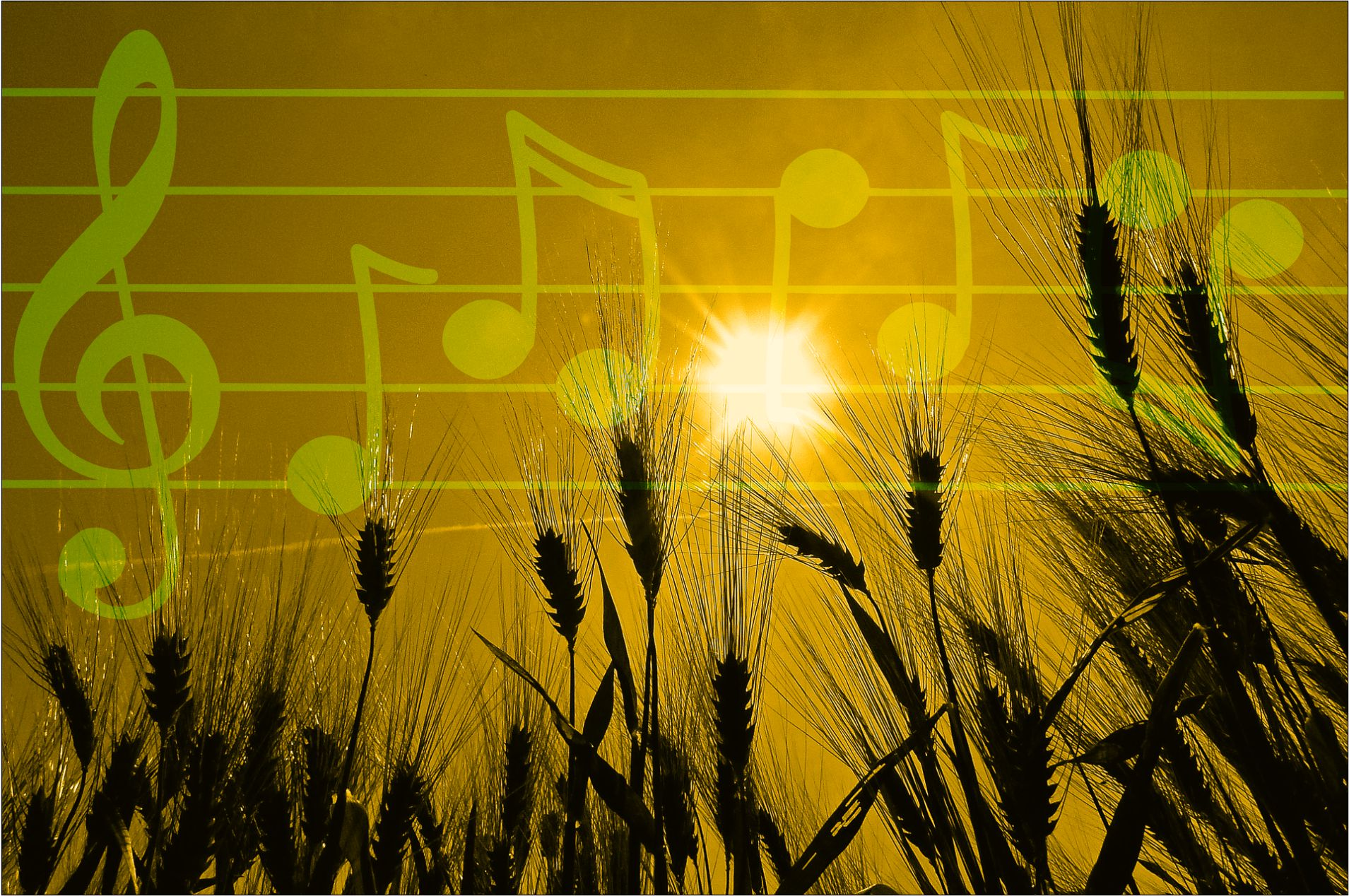 post feature image of wheat in the sun with overlay of musical notes
