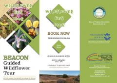 Wildflower-Bus-Tour