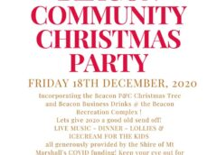 2020-Christmas-Party