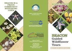 2021 Wildflower Bus Tours